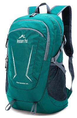 Venture Pal Large 45L Hiking Backpack