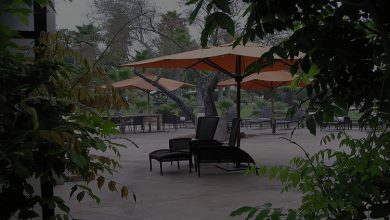 Best Offset Patio Umbrellas