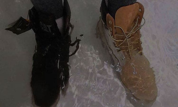 Best Waterproof Shoes
