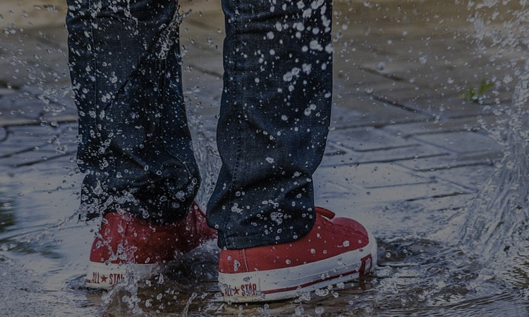 Best Waterproof Sprays For Shoes
