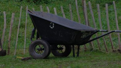 Best 2-Wheel Wheelbarrows