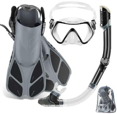 ZEEPORTE Mask Fin Snorkel Set with Adult Snorkeling Gear, Panoramic View