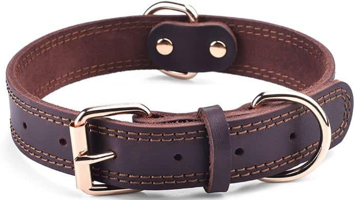 Leather Dog Collar With Double D-Ring