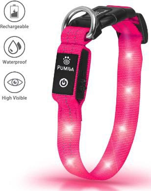 Waterproof & Rechargeable LED Dog Collar