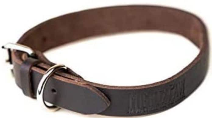 Super Soft Leather Dog Collar